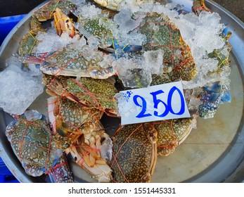 Bangkok,Thailand-September 2 2019 : Bucket of Striped Crab in a Fresh Market.