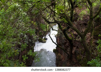 Banias, The Golan Heights, Israel
