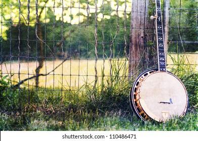 banjo in a field