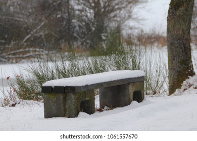 Bank covered with snow in a winter landscape