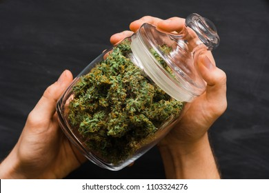 A bank with fresh buds of cannabis in the hands of a man. A lot of marijuana. Concepts of legalizing weed. Top view. Close up . Black background .
