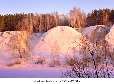 The bank of the Inya River in winter. A high slope with trees at the top among drifts of snow in the pink morning light. Novosibirsk, Siberia, Russia