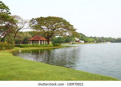 Bank pond in public park.