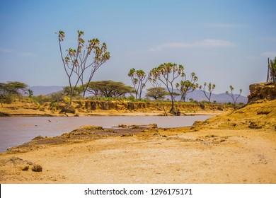 Banks of river ewaso nyiro
