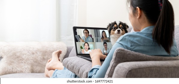 Banner of Asian woman on sofa and team on laptop screen talking and discussion in video conference and dog interruption.Working from home, Working remotely, Pets interruption and Self-isolation.