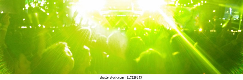 Banner Concert audience with green lights at Festival