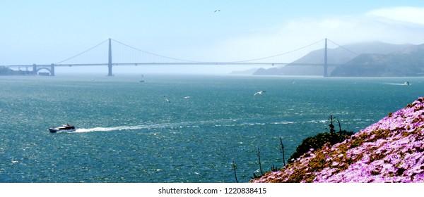 Banner - Distant Golden Gate