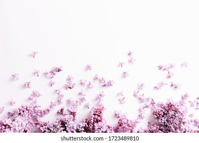 Banner of Frame of lilac flowers with space for text on white background. Flat lay, top view, spring concept, mother's day,