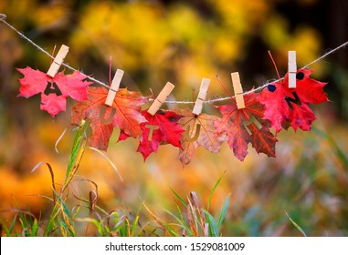 banner with letters and the name autumn carved on red maple leaves and hanging on clothespins and rope in the autumn clear bright Park