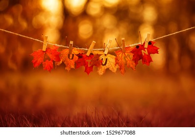 banner with letters and the name autumn carved on red maple leaves hanging on clothespins and rope in the autumn clear bright Park