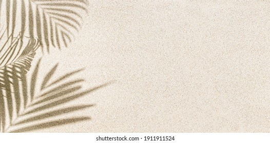 Banner of Palm leaf shadow on sand, top view, copy space