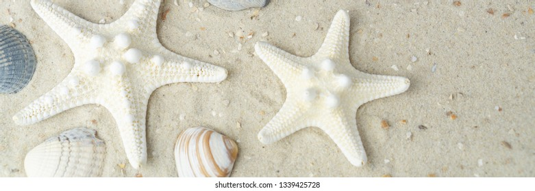 Banner of shells and sand at the beach with copy space