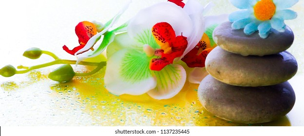 banner for website, Spa pink orchid with massage stones on blue wooden background