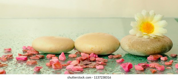 banner for website, stones for Spa background, flowers, space, a delicate light blue color