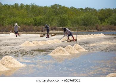 Bannlearm Petchaburi Thailand - MARCH 26, 2017 : Worker shoveling salt