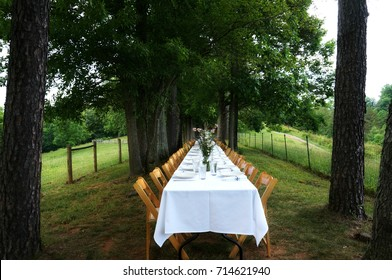 The Banquet Table at a Farm to Table Dinner
