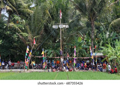 Bantul, Yogyakarta, Indonesia 17th of August 2016. People was cooperation in Areca (Pinang) Tree Climbing competition when celebration of Indonesian Independence Day