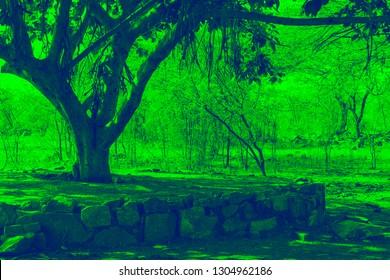 Bargad Images, Stock Photos & Vectors   Shutterstock