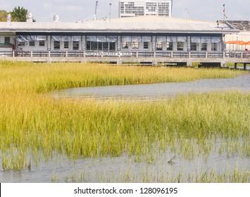 A bar and restaurant on the edge of a salt marsh on the coast of South Carolina in Charleston