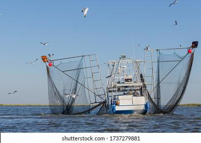Barataria Bay, Louisiana/USA - 10/26/2014: Shrimp boat in Barataria Bay, Louisiana with seagulls and barking dog