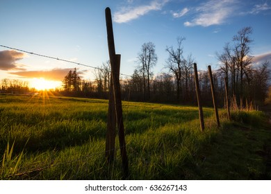 Barb Wired Fence in front of a farm field during a beautiful sunset. Taken in Surrey, Greater Vancouver, British Columbia, Canada.