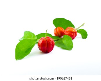 Barbados Cherry isolated on white background
