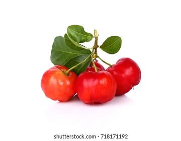 Barbados cherry, Malpighia emarginata, Family Malpighiaceae
