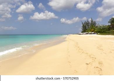 Barbados Pink Sand Beach