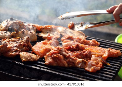 barbecue barbeque picnic BBQ meat pig pork chicken beef veal sausages grilled