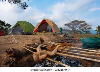 Barbecue chicken. Royalty high-quality free stock image of bbq chicken and camping tent in the forest