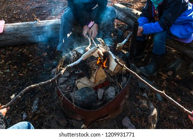 Barbecue in the forest