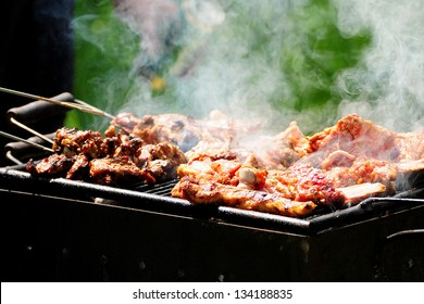 Barbecue in the forest.shashlik at nature.Process of cooking meat on barbecue, closeup.Barbecue with meat in metal grate, closed-up in forest with grass