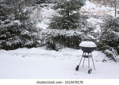Barbecue in winter forest