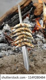 "Barbecued fish ""Espetos"" on the Malaga beach, Costa del Sol, Andalusia, Spain"