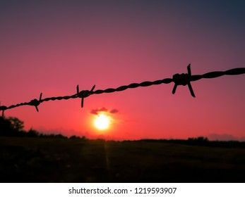 Barbed wire against the red sky. The concept of freedom or proson.