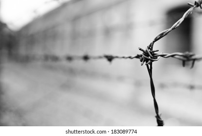 Barbed wire at the Auschwitz concentration camp