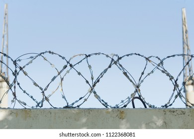 Barbed wire and blue sky in the background. Close-up