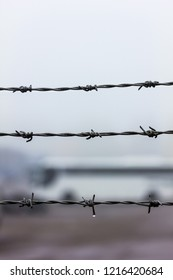 Barbed wire close-up with a bus on the background