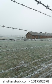 barbed wire in a Concentration and Extermination Camp