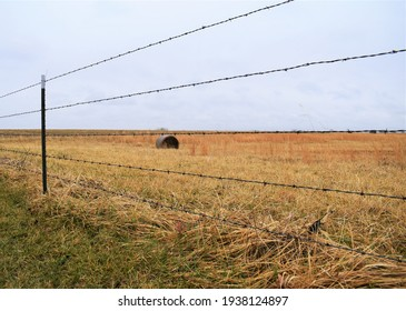 Barbed wire fence by a hay field