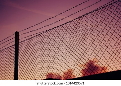 Barbed wire fence at dusk