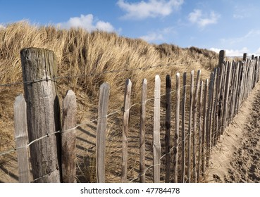 Barbed Wire Fence in The Hague's West Dune Park