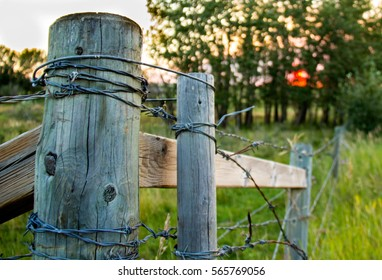 A barbed wire fence post on a farm