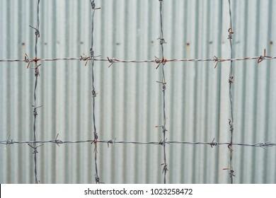 Barbed wire, a fence in prison. Prison concept