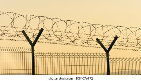 barbed wire and fence for security at airport or prison. sunset scene