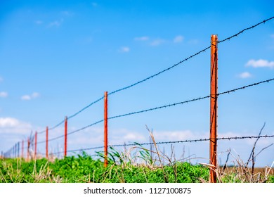 A barbed wire fence with selective focus framed by a bright blue sky