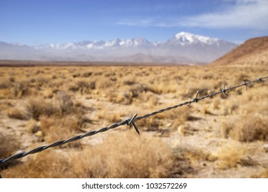 barbed wire fence strand with dry fields and distant mountains with shallow depth of field