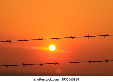 Barbed wire oddly frames the setting sun.