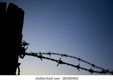barbed wire on a blue sky background