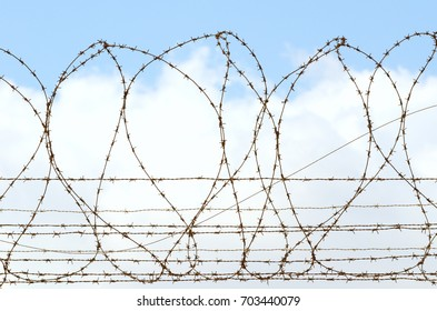 Barbed wire on the cloudy sky background